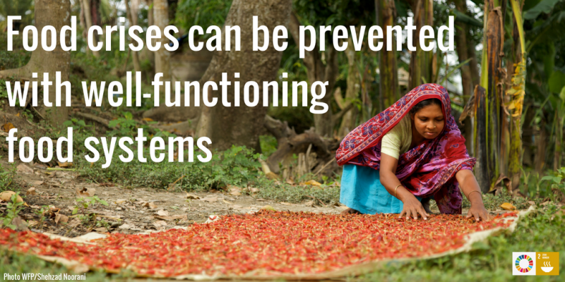 Food Systems for food crisis prevention