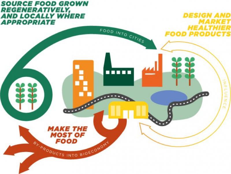 A circular economy for food | SDG2 Advocacy Hub