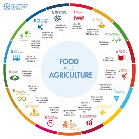 World Food Day: A #ZeroHunger World by 2030 is possible